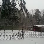 первомайское.нов.москва