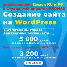 Сайт за 5000 рублей домен бесплатно стоимость веб дизайна реклама промо сео оптимизация сайта статьи рейтинги лучшая веб студия продвижение